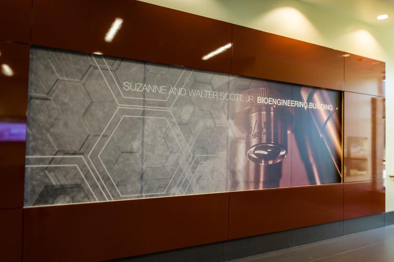 wall art in foyer of bioengineering building