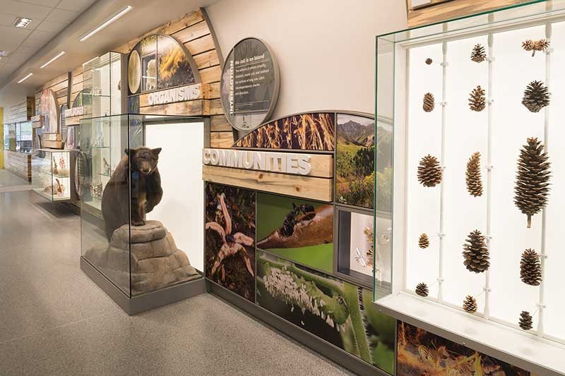 displays and exhibits in biology building lobby