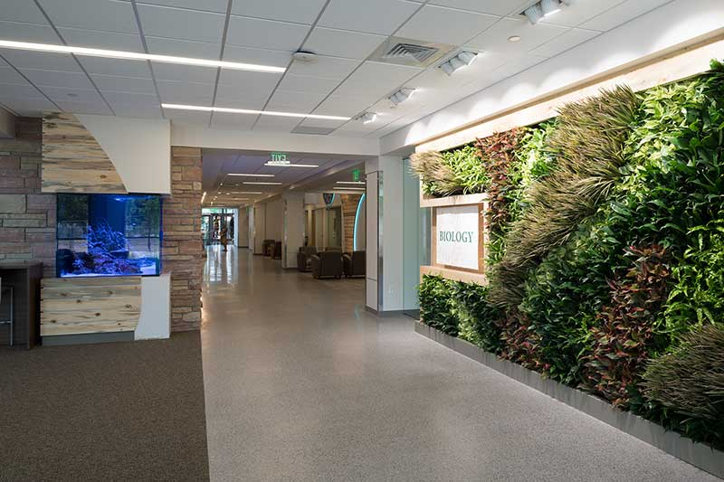 living wall in biology building lobby