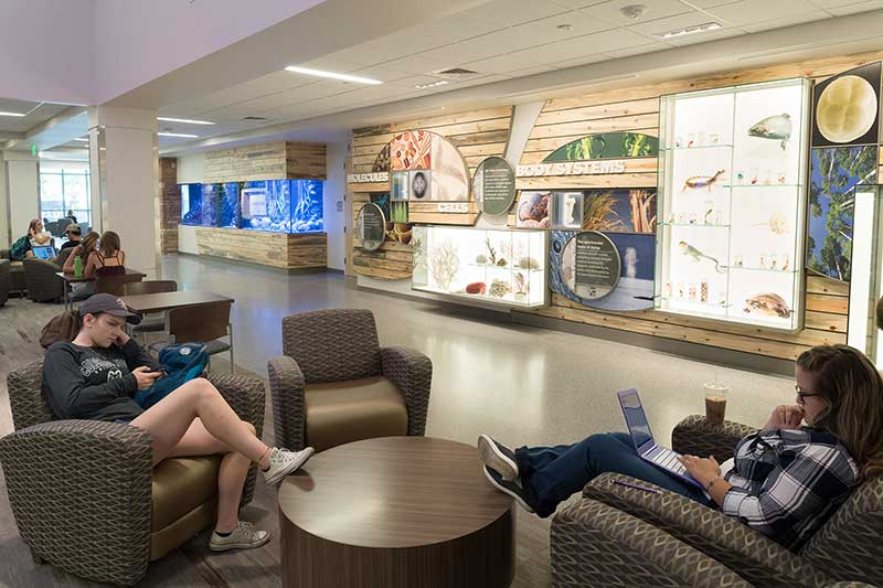 students studying in biology lobby