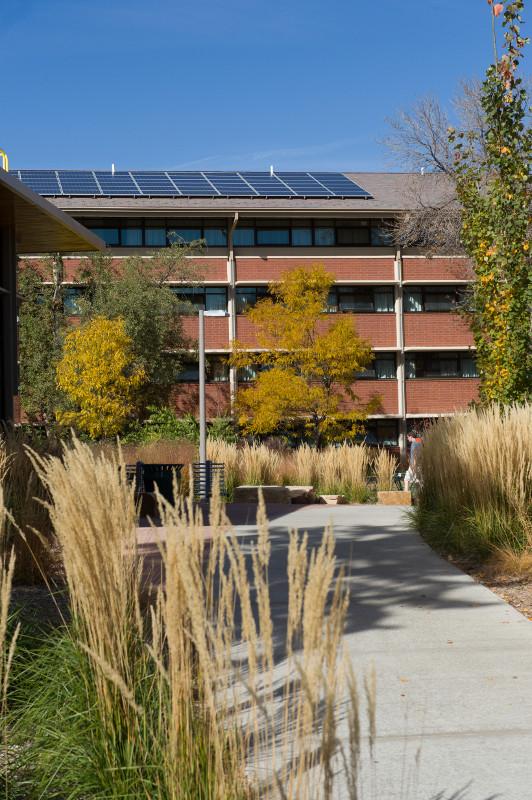braiden hall with solar panels