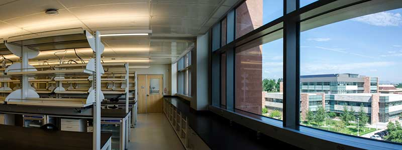 looking out window from chemistry lab room