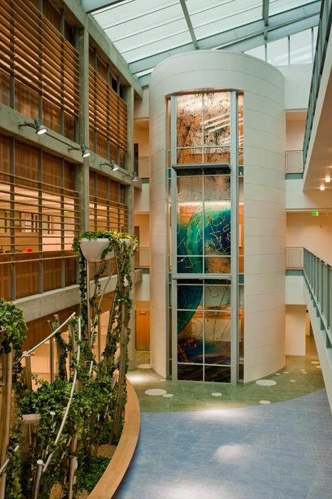 diagnostic medicine center lobby