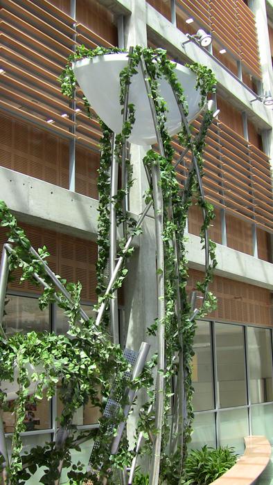 diagnostic medicine center indoor plant feature