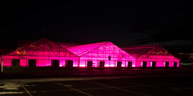 CSU Horticulture Center lit up at night
